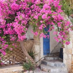 Koti-ikävä Kreetalle