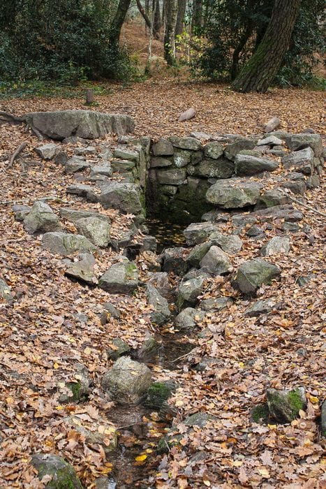 fontaine de Merlin broceliande