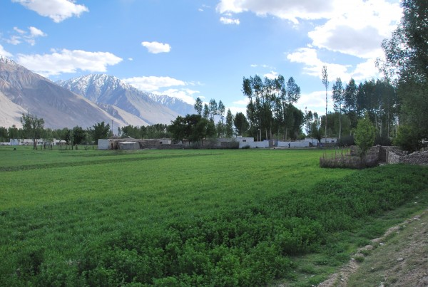 Lush gardens on the outskirts of a village along the Pamir Highway