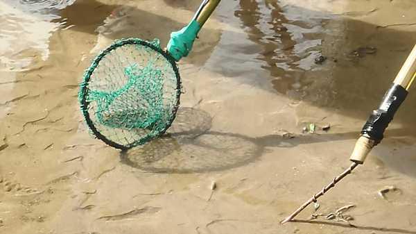 Chinese-Electrofishing-9_DCE