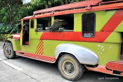 jeepney in