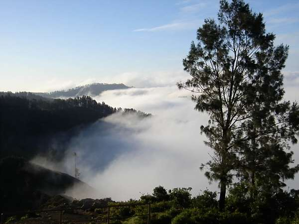 The mist rolls in 3_DCE