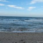 Mar Caribe Palomino