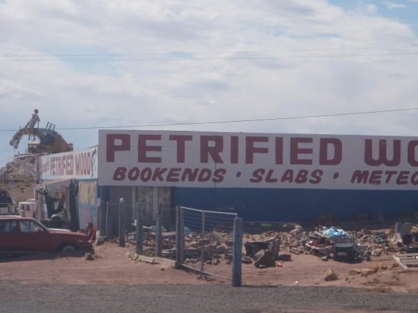 Petrified Wood Store Arizona