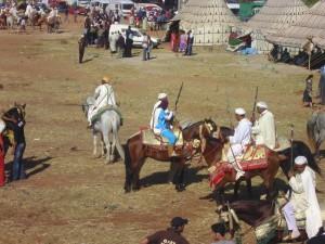 Fantasia, Beber horses, Morocco cavalry