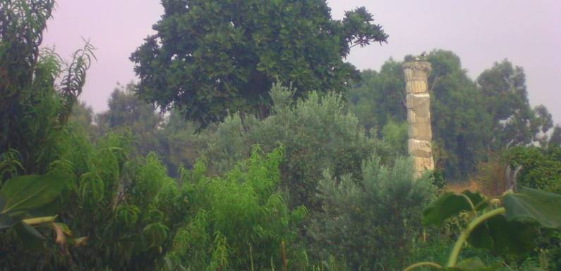 The Temple of Artemis and Isa Bey Camii