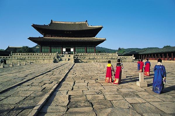 free trip to korea