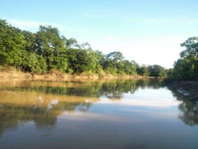Amazon River stretch