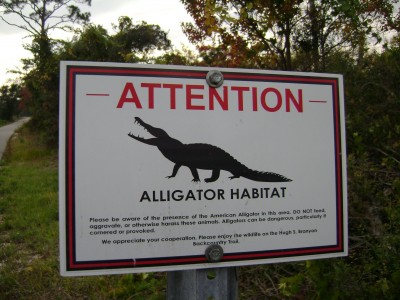 watch out for gators in Alabama