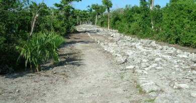 Cozumel Road Mexico