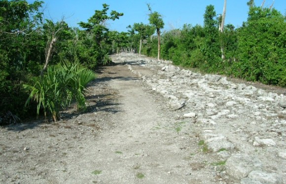 Cozumel – Getting Ruined Among Ruins in Mexico