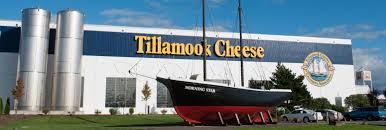 tillamookcheese