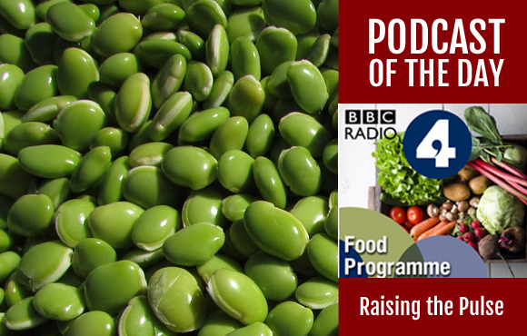 The Food Programme - Raising the Pulses