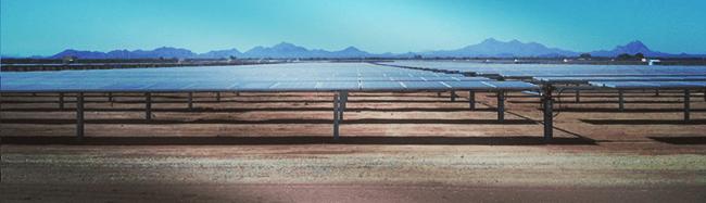 Tuscon Desert panels