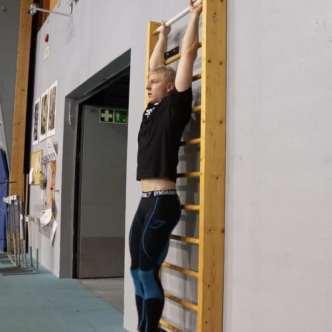 hanging knee raise hold