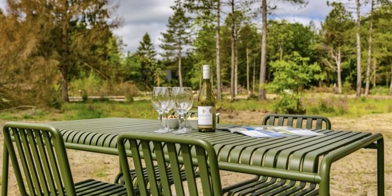 4-persoons luxe vakantiehuis in Drente | Zeegser Duinen