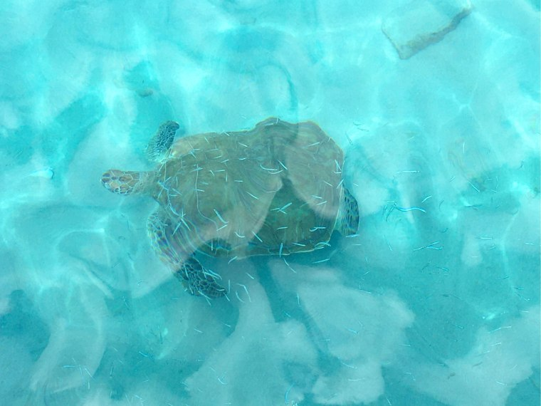CuracaoVillaKasBonBida-17_liggend2560px