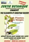 sortie-botanique-busser-copie