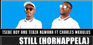 Tsebe Boy & Tebza Ngwana – Still (Hornappela) Ft. Charles Mkhulu