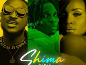 Idahams Ft. Peruzzi & Seyi Shay – Shima (Remix)