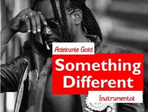 Adekunle Gold - Something Different ( Instrumental )
