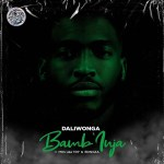 Daliwonga ft. MDU aka TRP, Bongza – Bamb'inja