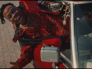 Fireboy DML – Friday Feeling ( Video )