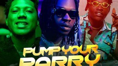 Abramsoul ft Naira Marley & C Blvck – Pump Your Parry (Remix)