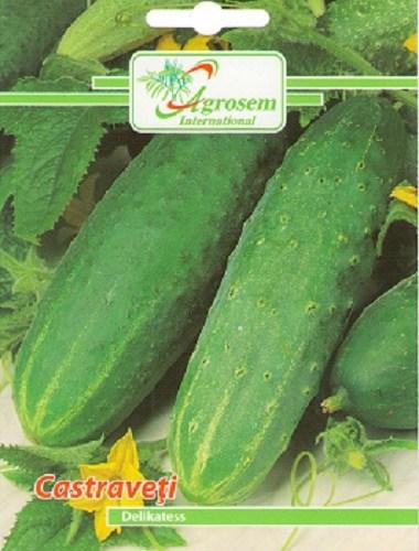 Seminte legume - Castraveti Delikatess