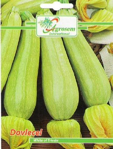 Fruct usor conic