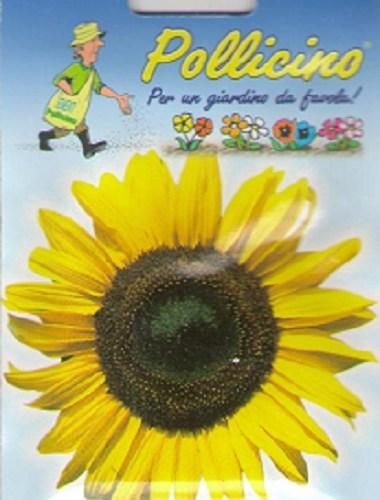 Seminte Flori de Floarea soarelui