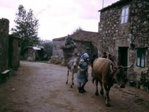 Galley1-Spain