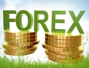 Investasi Forex Online? Begini Cara Mainnya!