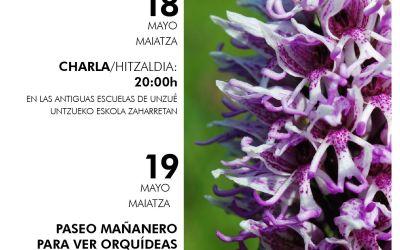 Orquídeas de la Valdorba/Orbaibar