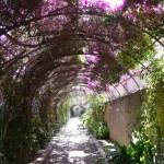 Los jardines más bonitos de Valencia