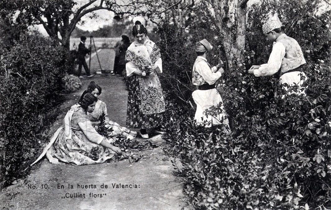 En la huerta valenciana