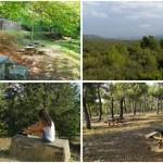 Fuente Umbría y Las Moratillas, remansos naturales de Buñol