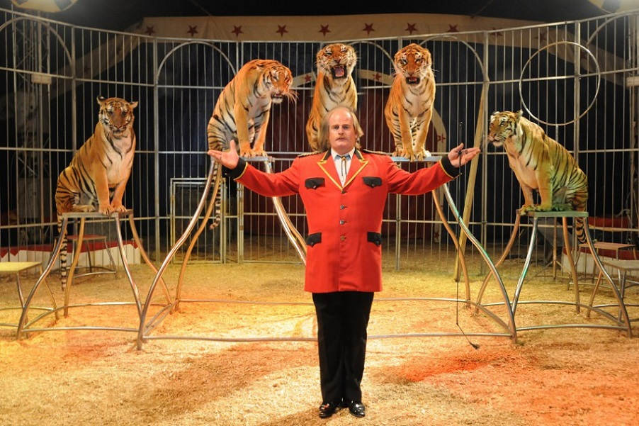 El único circo de la Comunidad Valenciana con animales prolonga su estancia en Alfafar