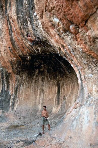area-covapetxina 4