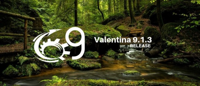 Valentina Release 9.1.3