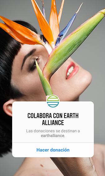 lucha contra el cambio climatico 2019 Valentina Falchi