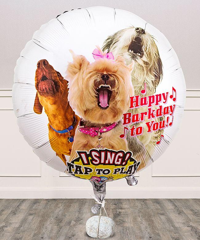 Singender Ballon  Tierische Geburtstagsgre Hunde und