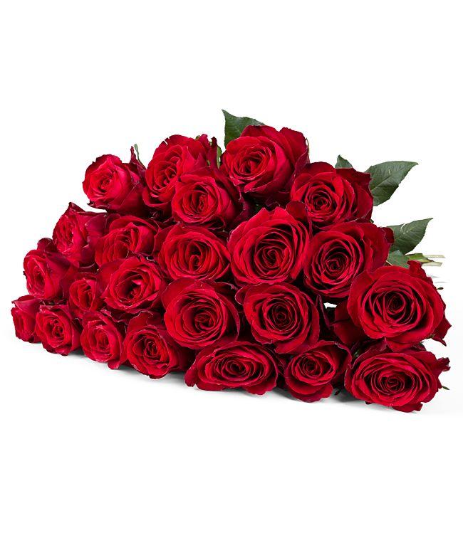 23 rote Rosen  jetzt bestellen bei Valentins  Valentins