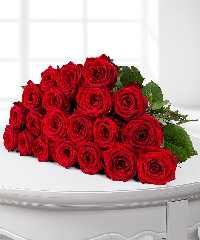 20 langstielige rote PremiumRosen  jetzt bestellen bei