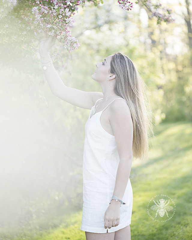senior girl, a member of Valerie's bee squad, poses with blossoming redbuds in west michigan spring. She wears a white dress with the sunlight beaming behind her