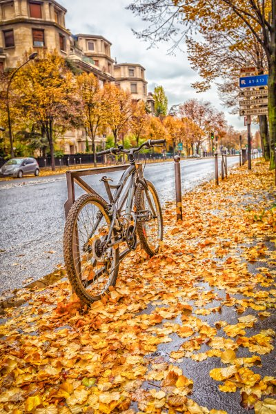 "Buy Fine art print ""Bike Raining fall"" Paris for interior design"