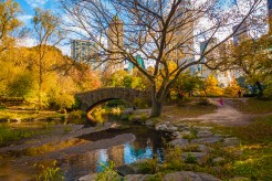 new-york-cityscape-central-park-4