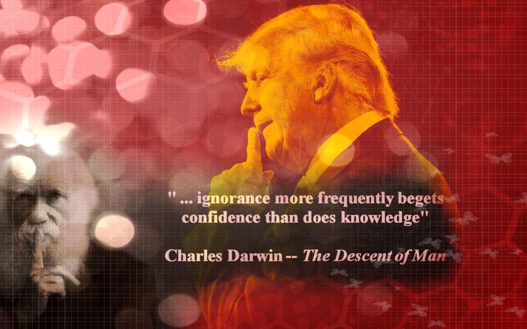 Una Società nella quale dominano gli incompetenti: Effetto Dunning-Kruger