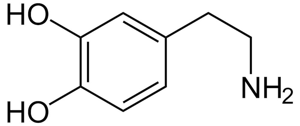 dopamina-psicofarmacologia-valerio-rosso