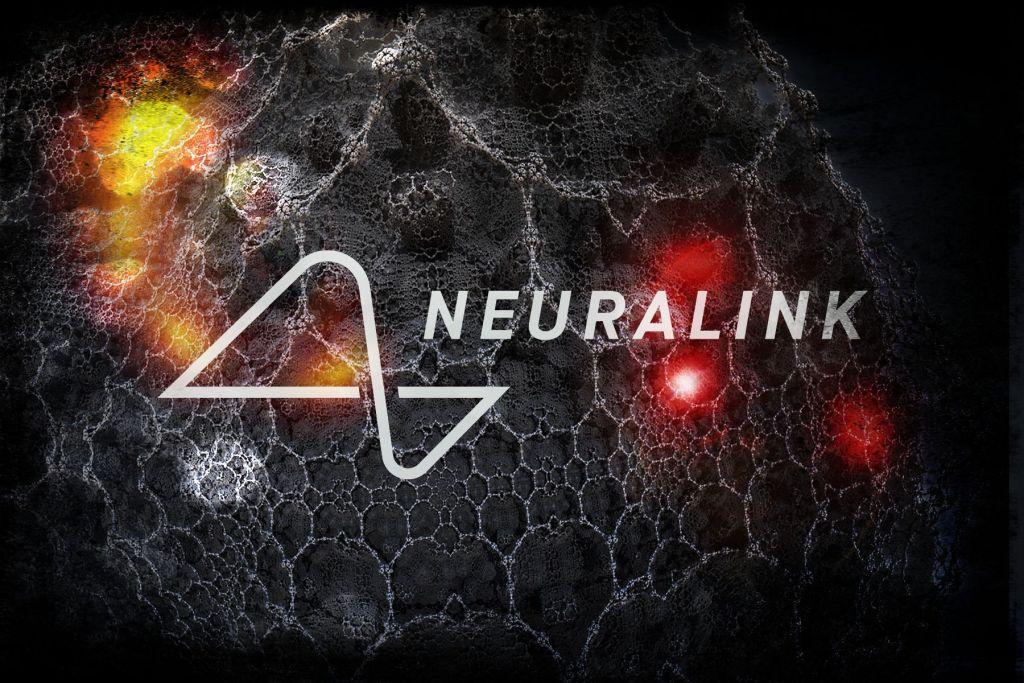 neuralink-elon-musk-cervello-computer